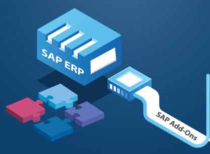 sap add on product for india